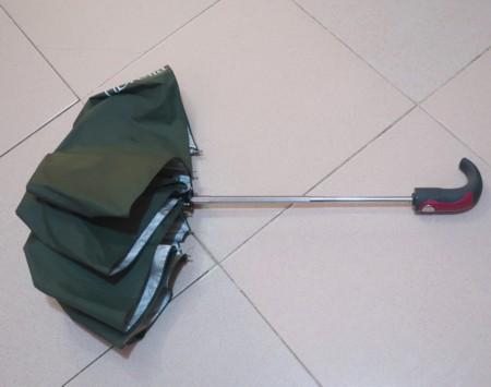 spring umbrella (60)