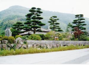 森田生家2003