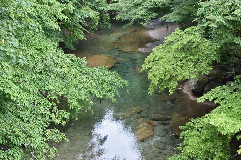 025 木の俣川