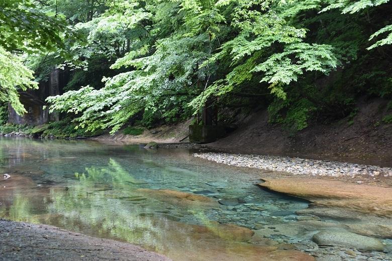 050 木の俣川