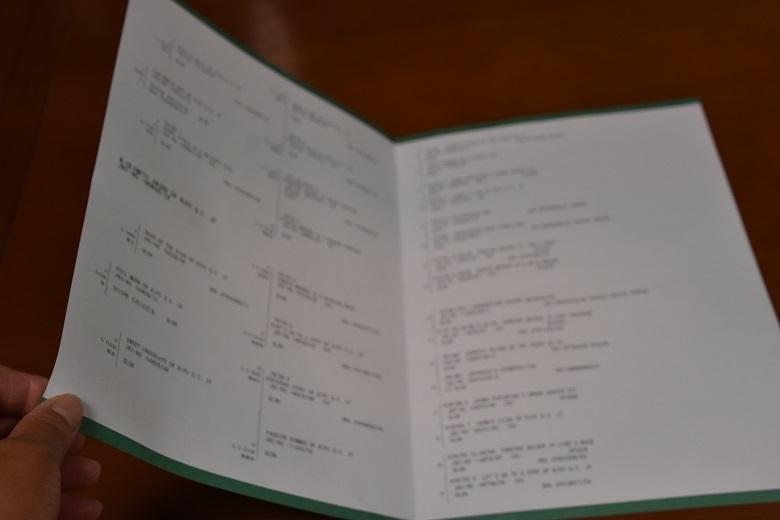 043 エルたん血統書