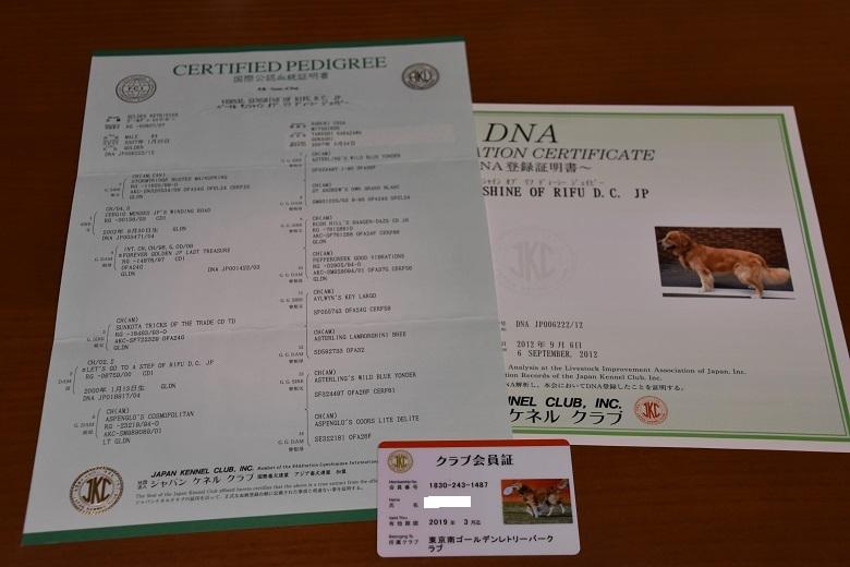 045 ケニたん血統書
