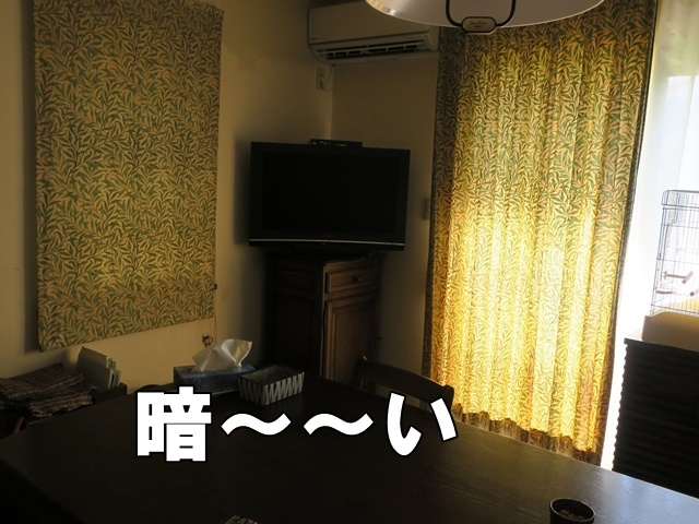 IMG_284320180721.jpg