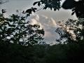 木間の入道雲