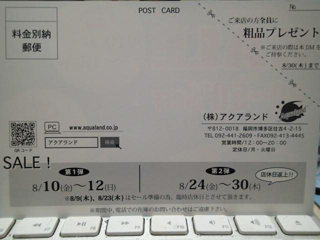 P8090003.jpg