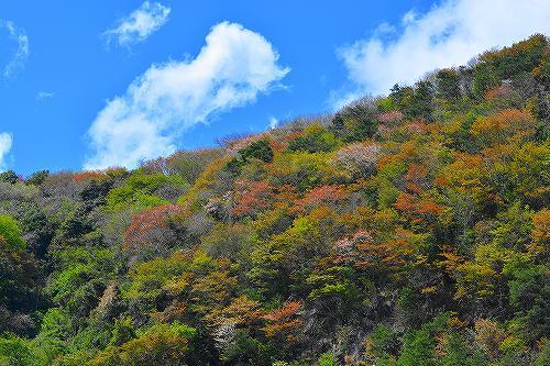 s-新緑の山②2018408