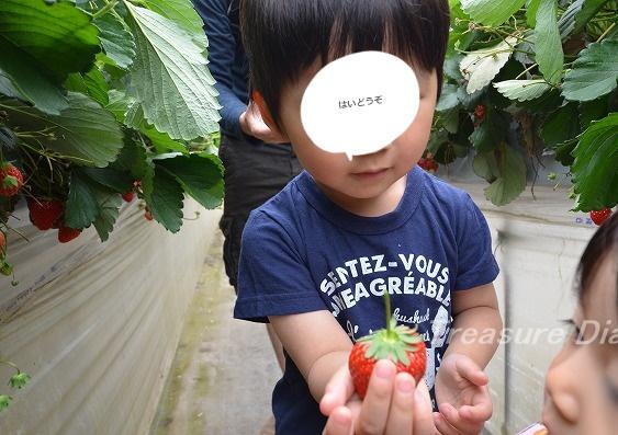 DSC_4564_20180513_10187-crop.jpg