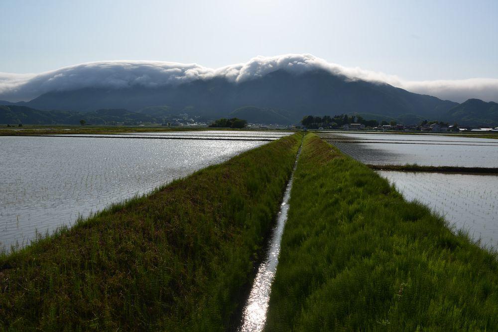 水田と弥彦山-2