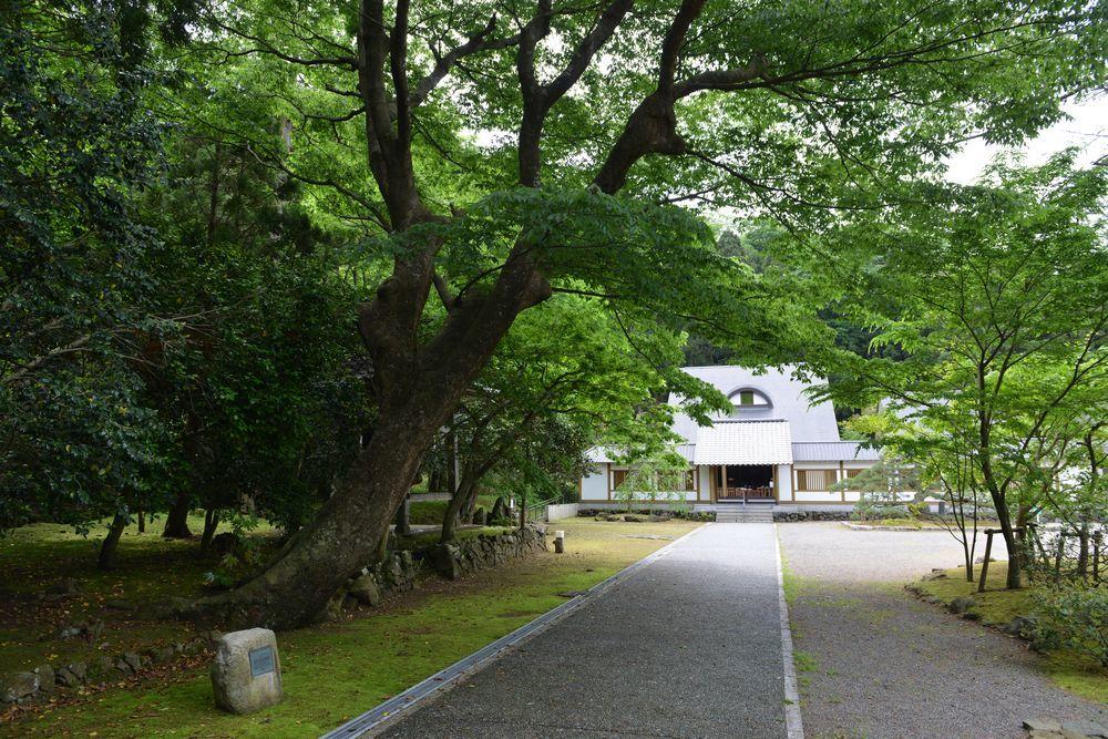 5月の妙光寺-2
