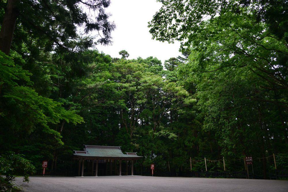 5月の弥彦神社-2