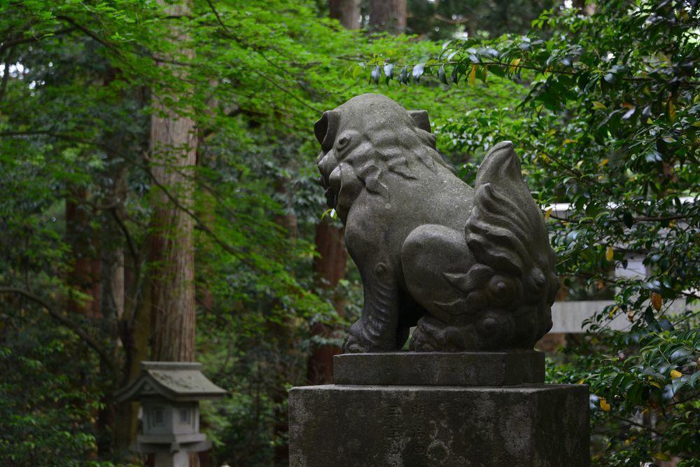 5月の弥彦神社-4
