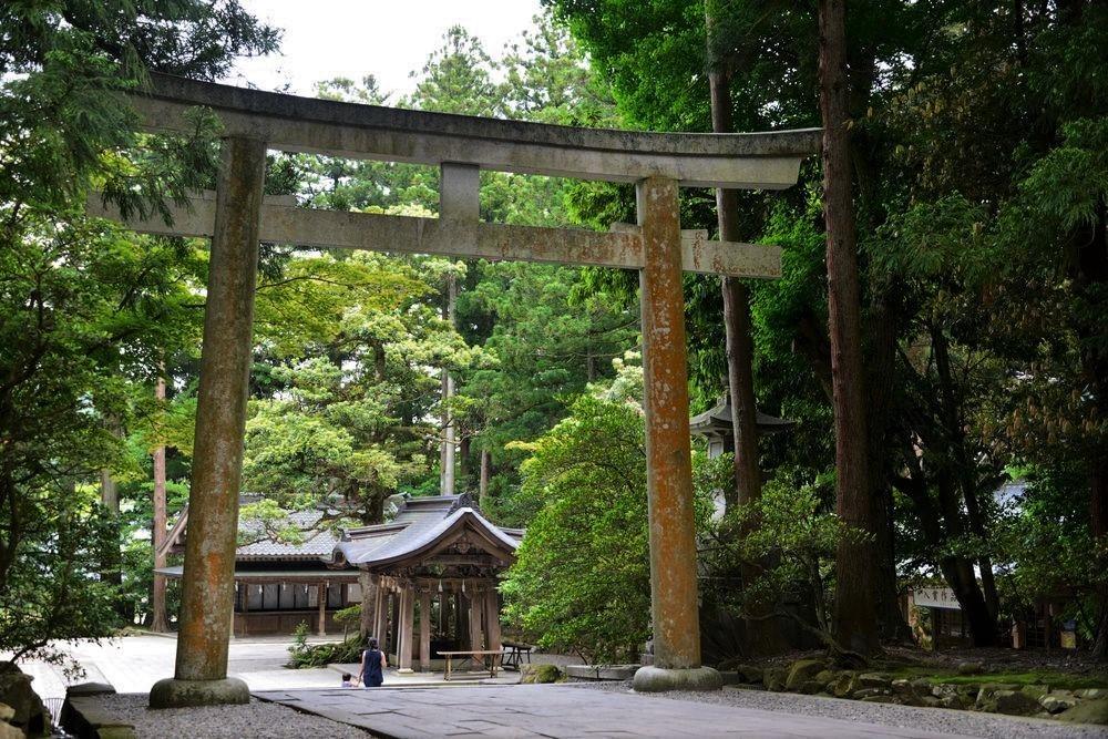 5月の弥彦神社-5