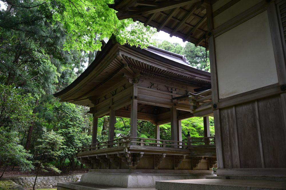 5月の弥彦神社-8