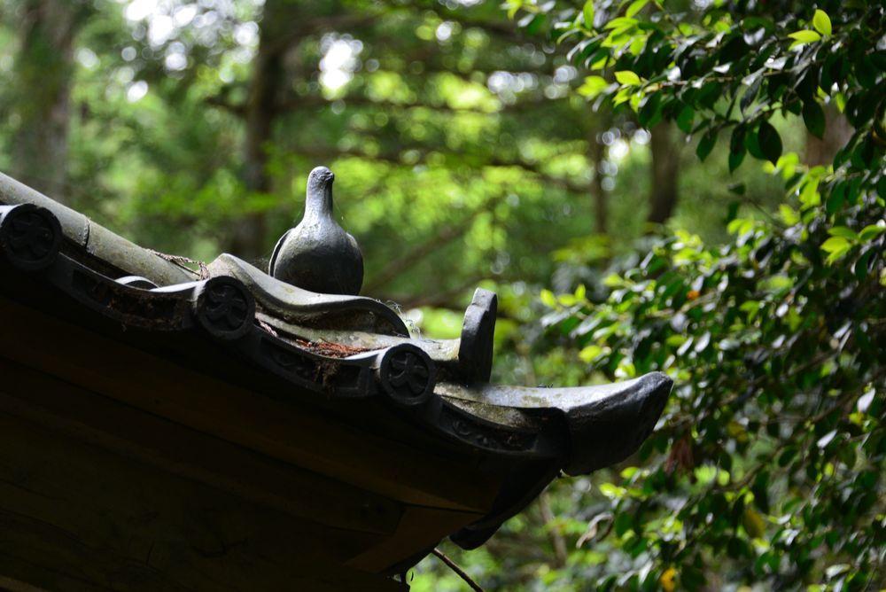 弥彦神社 スポット-6