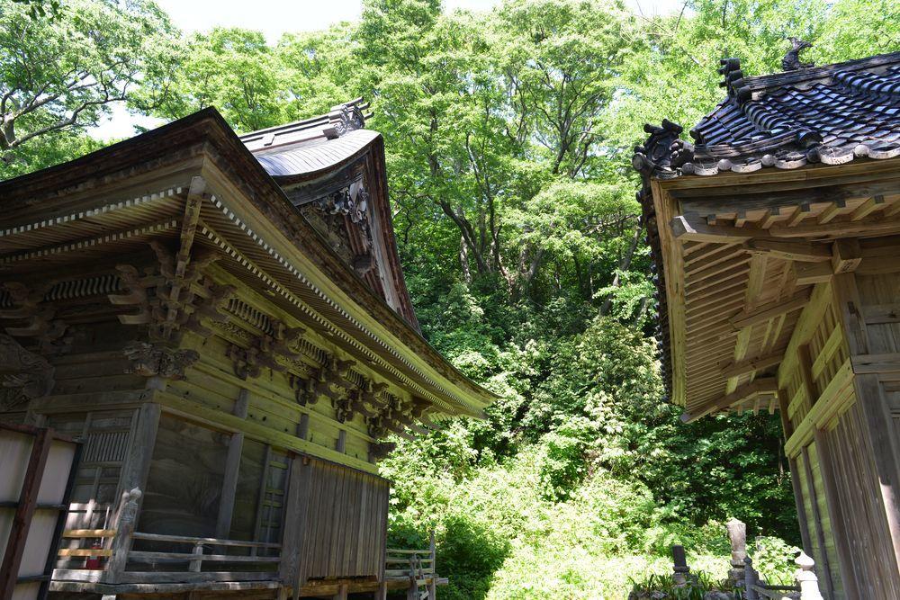 梅雨の晴れ間 西生寺-3