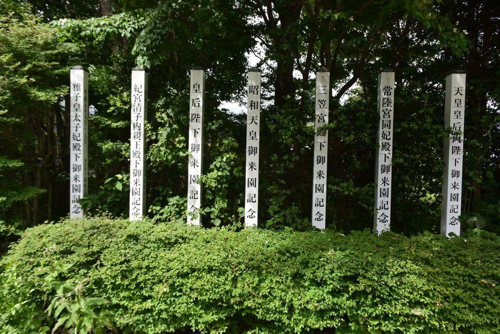 箱根湿性花園-7