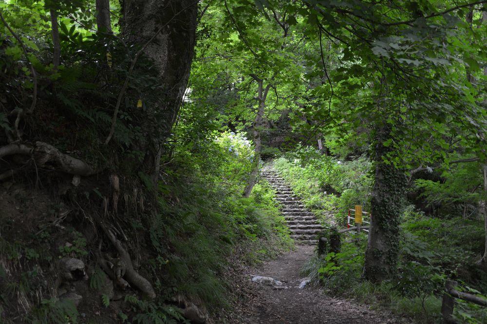 護摩堂山-2