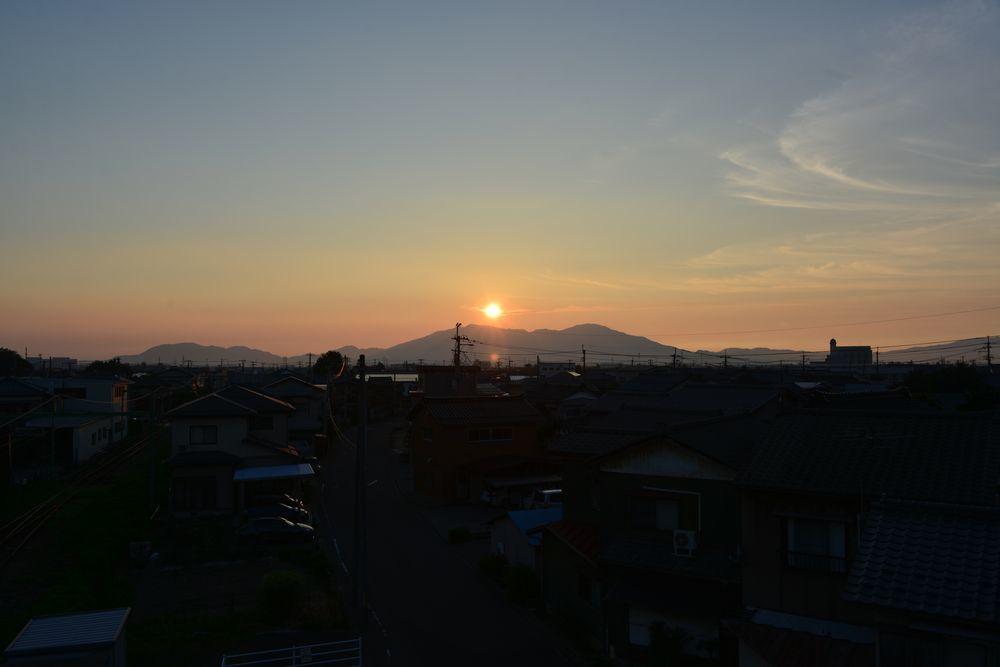 夕陽にカラス-1