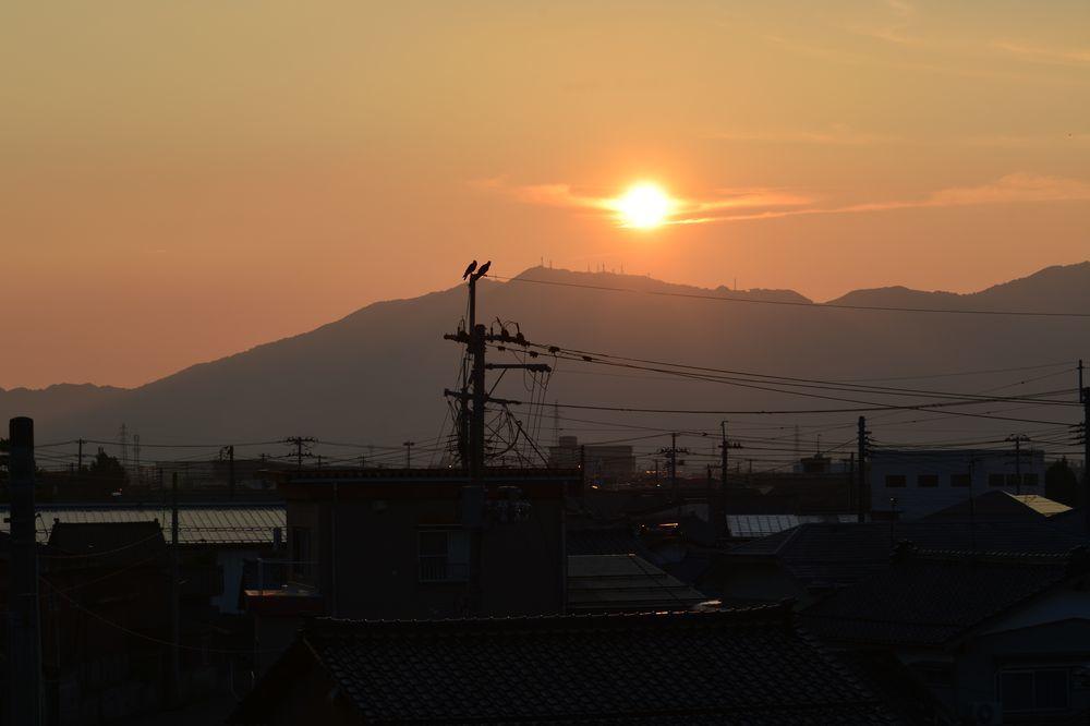 夕陽にカラスー2