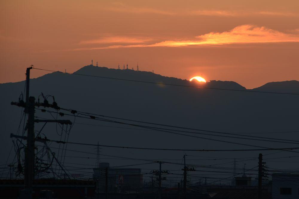 夕陽にカラスー7