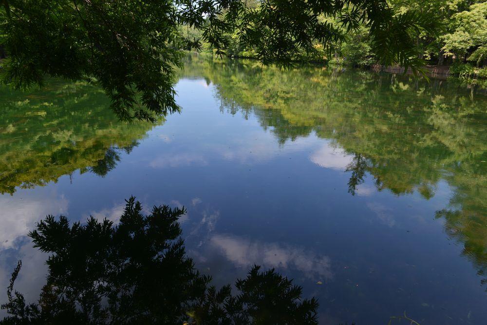 雲場池-3
