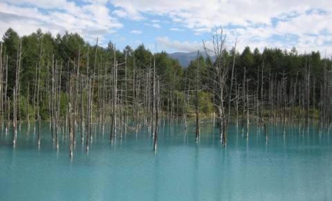 青い池(Web用)