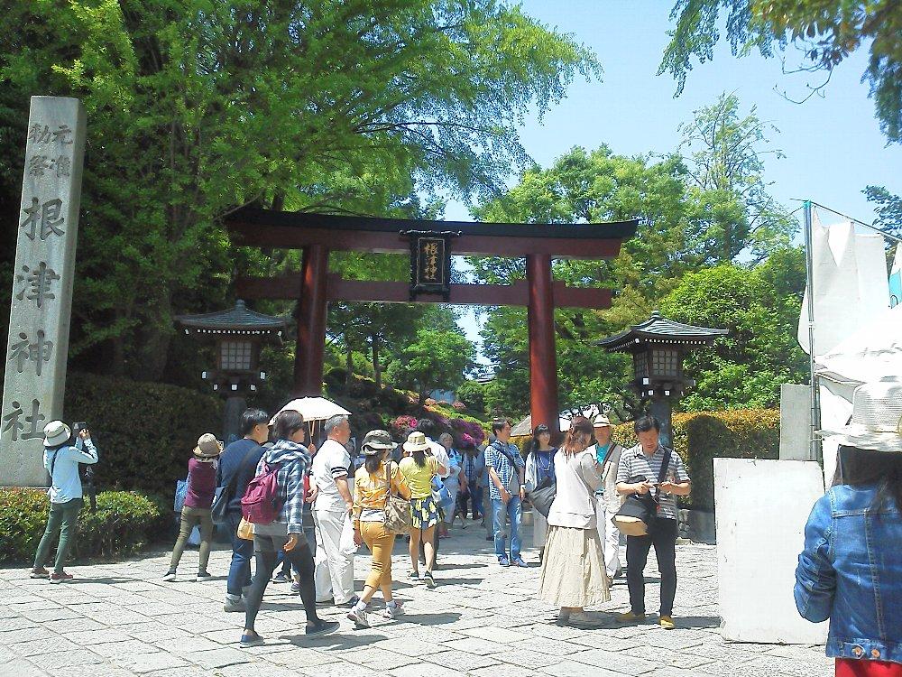 F1000273根津神社つつじ祭り4月29日