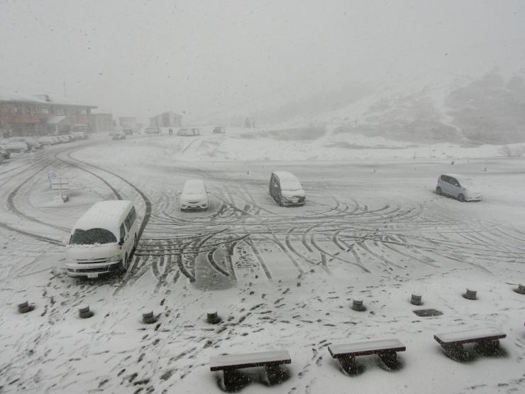 吹雪くこどもの日