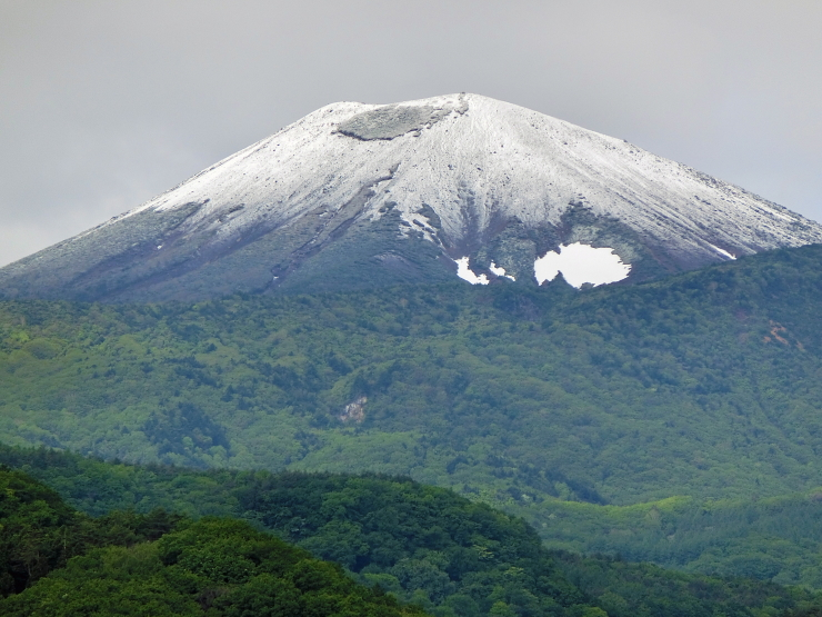 淡雪小富士