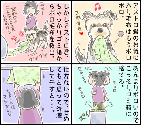 アストロアニメ_byもん母
