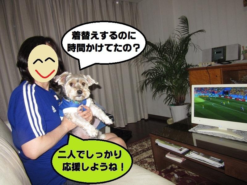 Worldcup18-4.jpg