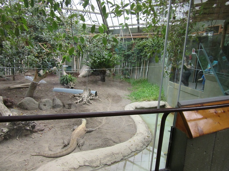 zoo11_20180728004446091.jpg