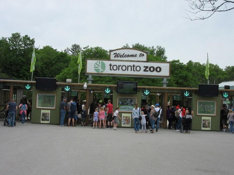 zoo_20180728003916a40.jpg