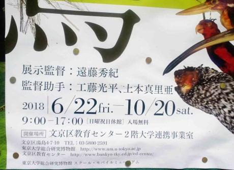鳥展03R