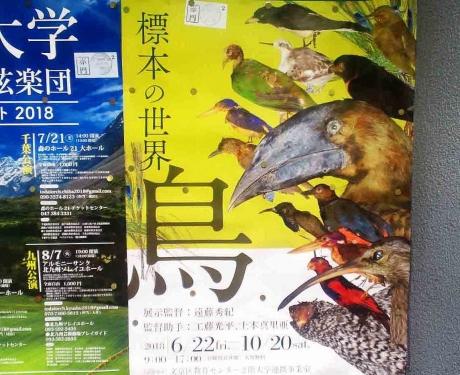 鳥展02RR