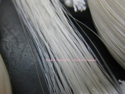 housetail hairs 4