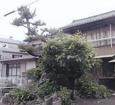 颯颯松野口町