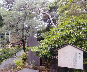 颯颯松八幡宮