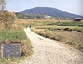 三輪山遠望山の辺の道景行天皇陵