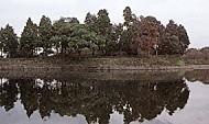 黒塚古墳遠景