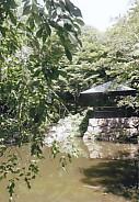 茶室松韻亭前庭