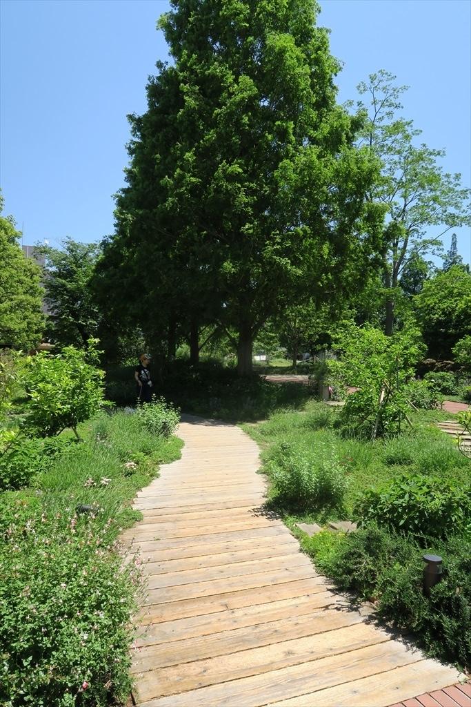 洒落た庭園とその周辺_2
