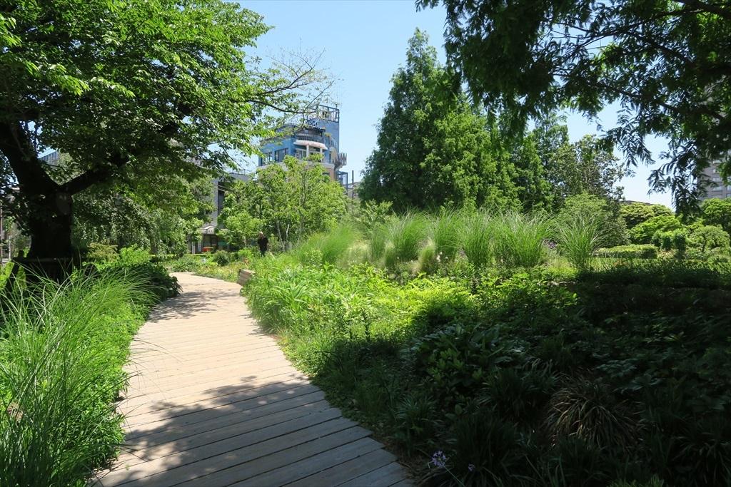 洒落た庭園とその周辺_3