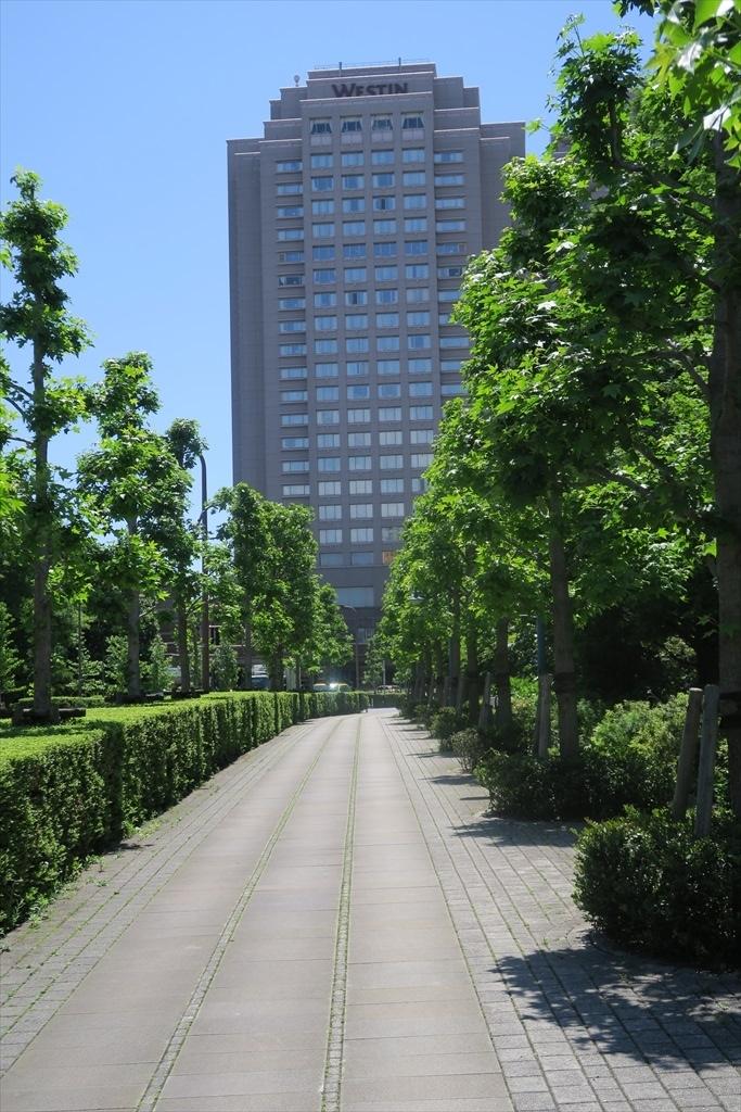 洒落た庭園とその周辺_13