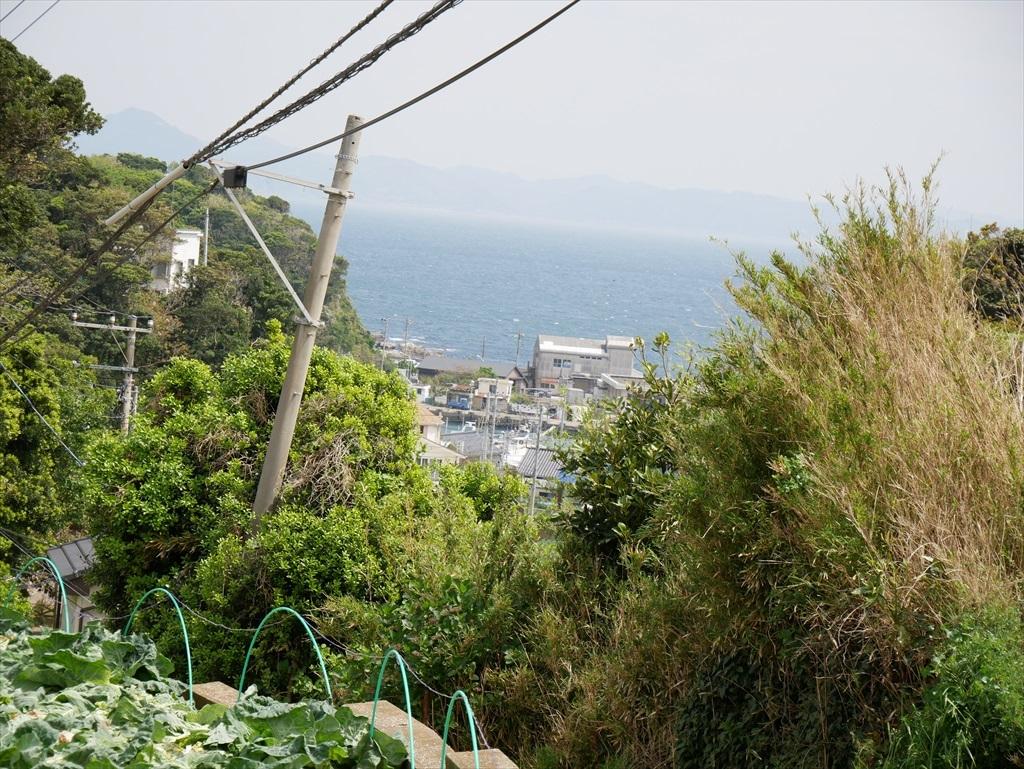 松輪地区の間口漁港かな_1