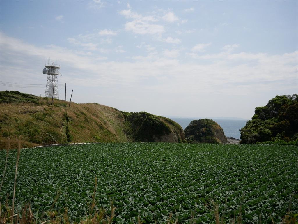 レーダー施設と灯台も間近に_4