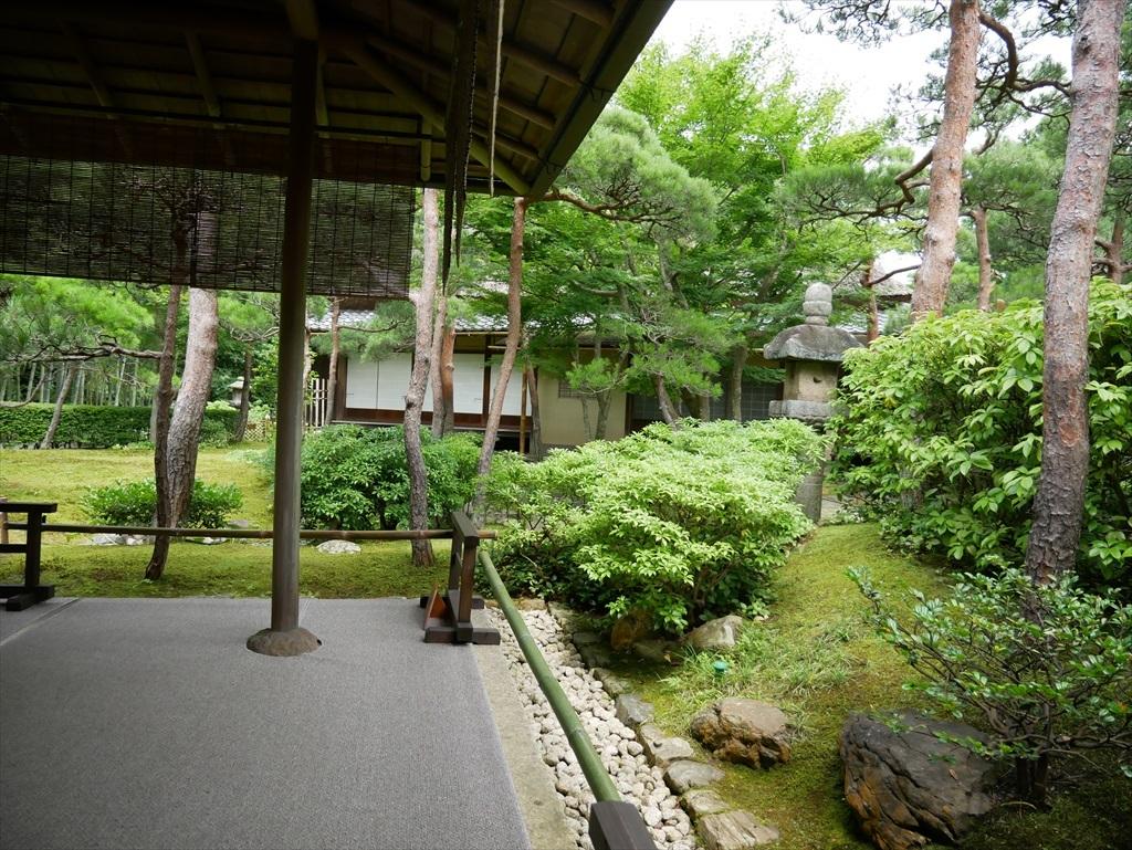 茶席『時雨』軒下から見た庭園_1