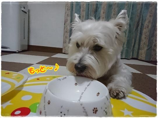 azukiai5_20180608184102f63.jpg
