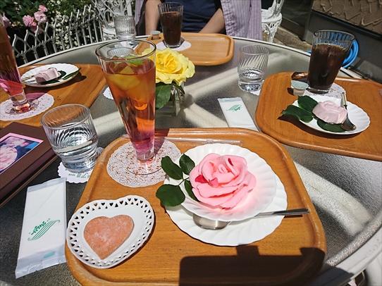 rosepark18.jpg