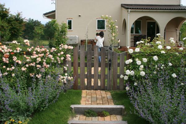 バラの庭3